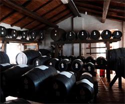 Aceto Balsamico Tradizionale matura in botti di legno per almeno 12 anni